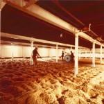 Benriach riapre il malting floor