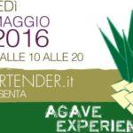 Agave Experience – Milano 9 Maggio 2016