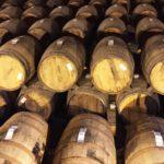 Tequila, la produzione: maturazione